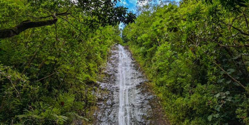 10 Hawaii Waterfalls You'll Love
